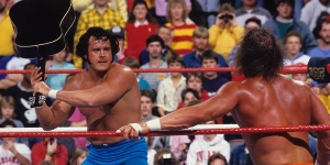 Honky Tonk Man vs Randy Savage